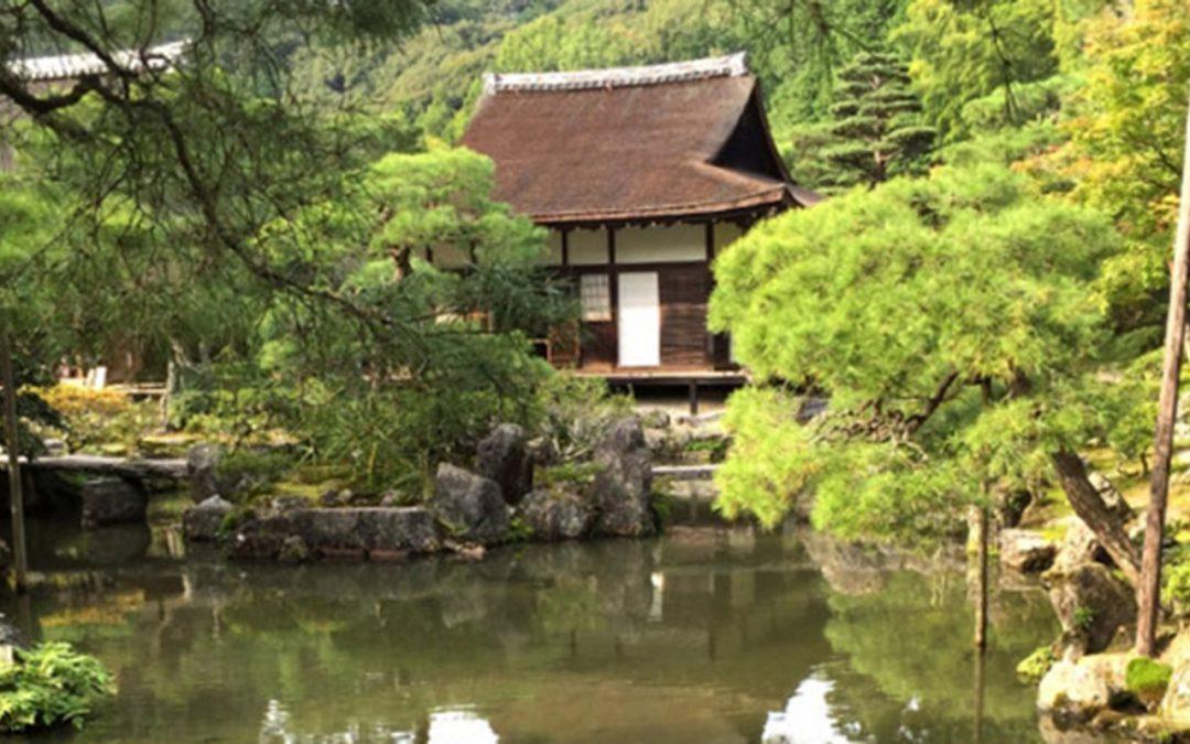 Team Delta autour du monde – Julie au Japon