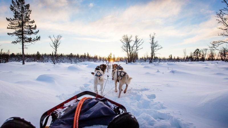 Aventure hivernale dans les rocheuses canadiennes